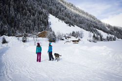 [Translate to English:] Winterwandern im Zillertal